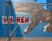 New York Rex