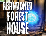Abandoned Forest House